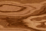 Fototapety background of olive wood texture