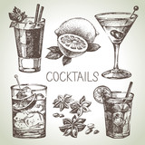 Fototapety Hand drawn sketch set of alcoholic cocktails