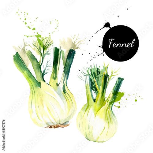 Transparent zioła i przyprawy kuchenne. Ilustracji wektorowych. Akwarela