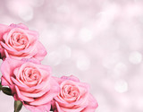 Fototapety Floral border blurred background, flowers rose