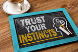 trust your instincts poster
