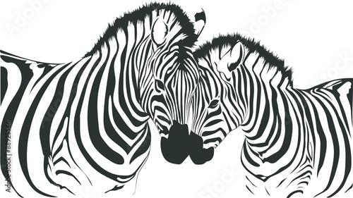 Obraz na Szkle zebre