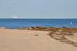 Falmouth Beach on Cape Cod in Massachusetts