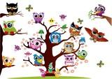 sowy,las,drzewo