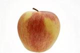 frischer rot-gelber Apfel der Sorte Elstar