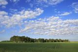 Beautiful cumulus cirrus clouds over field.