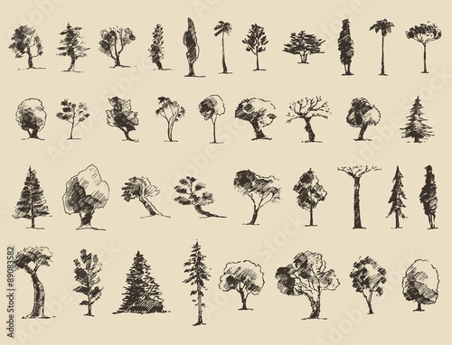 Trees sketch set, vintage vector style, hand drawn - 89083582