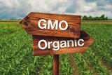 Gmo or Organic Farming Direction Sign