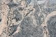 Pink black granite