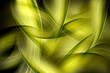 abstract beautiful green waves background