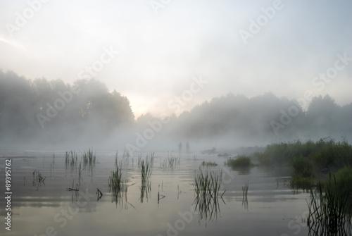river © TSpider