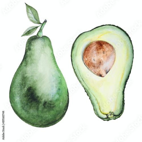 Avocado watercolor  - 89560744