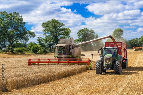 Poster Mähdrescher und Traktor mit Ladewagen bei der Getreideernte - 2899