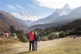Calf feeds pastures in front Ama Dablam mountain peak. Nepal.