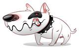 собака, злость, рычание, бультерьер, персонаж, череп, ошейник
