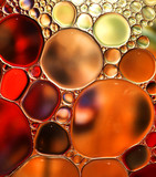 Fototapety Abstract background,colorful oil droplets on water surface,