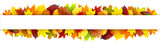 Fototapety Colorful autumn leaves banner
