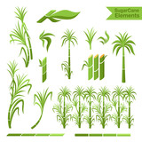 Sugar cane decoration elements