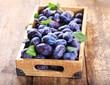 blue plums