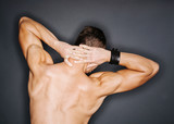 Triceps and trapezius poster