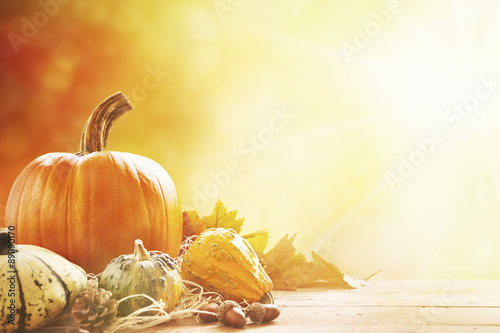 Autumn still life in bright sunlight