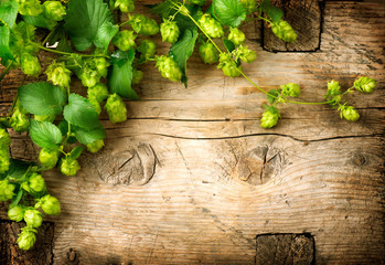 Hop twig over old wooden table background. Vintage style. Beer production. Brewery