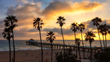 Palm trees over the Manhattan Beach and Pier on sunset in Los Angeles. - Fine Art prints