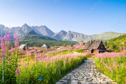 Fototapety, obrazy : Wooden huts scattered on flowery meadow
