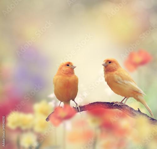 mata magnetyczna Yellow Birds in The Garden