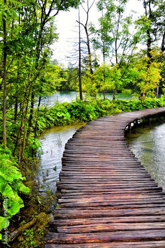 Fototapeta Plitvice lakes Croatia
