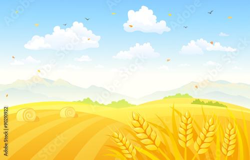 Aluminium Boerderij Autumn fields background