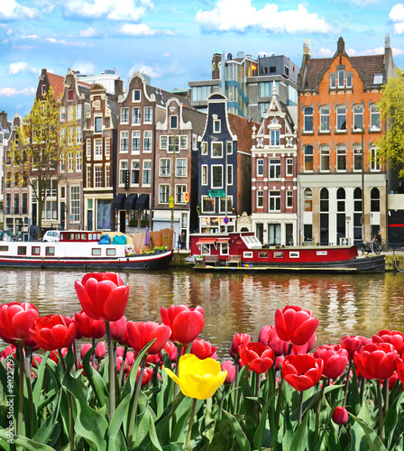 Fotobehang Amsterdam Beautiful landscape with tulips and houses in Amsterdam, Holland