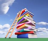 L'ascesa per conquistare la vetta del sapere