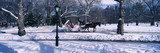 Panoramic view of snowy city street lamps, horse and carriage in Central Park, Manhattan, New York City, NY on a sunny winter day