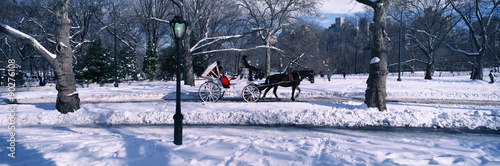 Panoramic view of snowy city street lamps, horse and carriage in Central Park, Manhattan, New York City, NY on a sunny winter day - 90276108