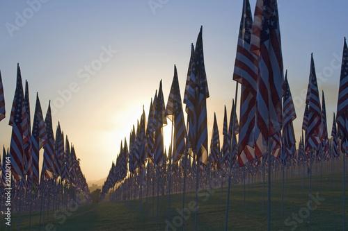 Poster 3000 Flags, September 11, 2009, Malibu CA