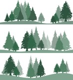 Landscapes with silhouettes of fir trees