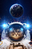 Fototapety Beautiful cat in outer space. Elements of this image furnished