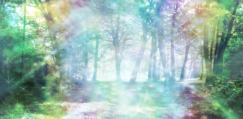 Magical Spiritual Woodland Energy - rainbow colored woodland scene with streams of sparkling light  © Nikki Zalewski