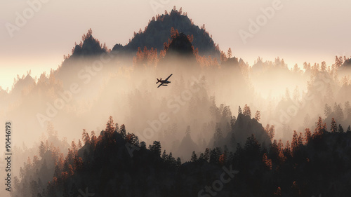 Private airplane flying over autumn pine trees in the mist. - 90446193