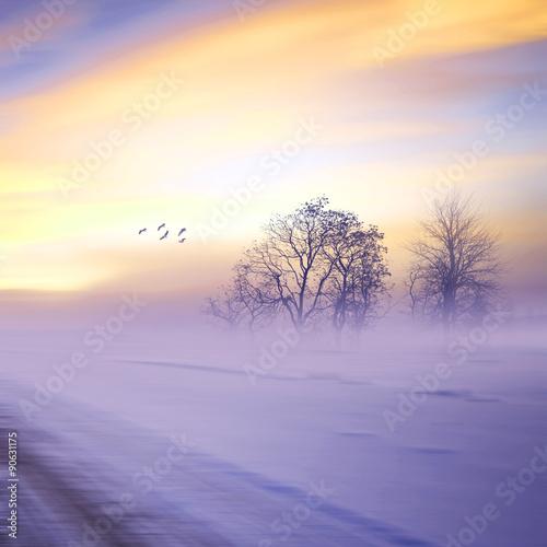 Fototapeta Beautiful landscape