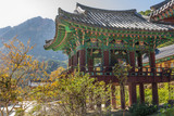 The building temple in Seoraksan National Park, South korea poster
