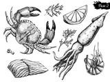Vector hand drawn seafood set. Vintage illustration
