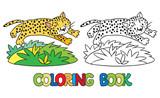 Coloring book of little cheetah or jaguar
