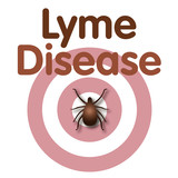 Lyme Disease, bulls-eye rash, tick, concentric circles design