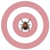 Lyme Disease, bulls-eye rash, tick, concentric circles design