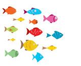 Fototapety Aquarium Fishes