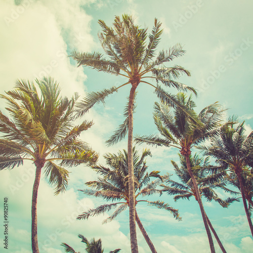 coconut palm tree and blue sky clouds with vintage tone. - 90825740