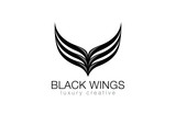 Elegant Black Wings as V letter Luxury Abstract Business Fashion - 90934399