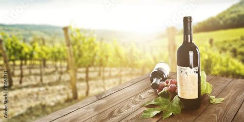 Fotobehang Wijngaard wine